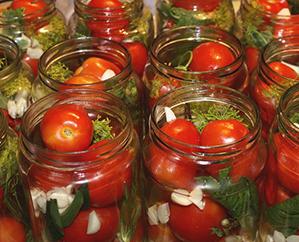 Chuyển giao công nghệ sản xuất cà chua ngâm dấm