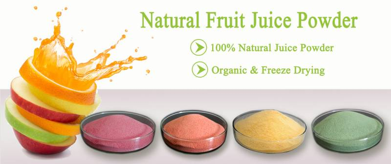 Chuyển giao công nghệ bột trái cây hòa tan