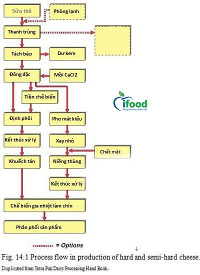 Dây chuyền sản xuất phomat IFOOD