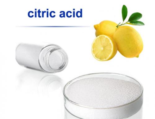 Acid citric và công dụng mang lại cho thực phẩm của bạn (E330)