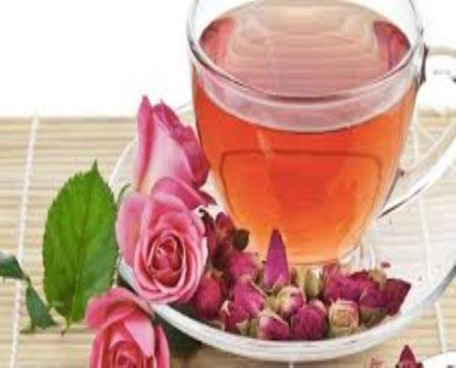 Chuyển giao công nghệ nước trà hoa hồng