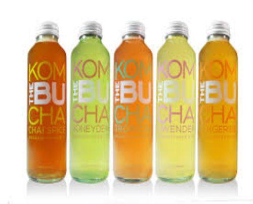 Chuyển giao công nghệ sản xuất trà kombucha đóng chai