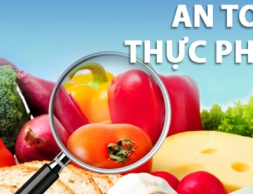 An toàn thực phẩm là gì? Tại sao phải vệ sinh an toàn thực phẩm?